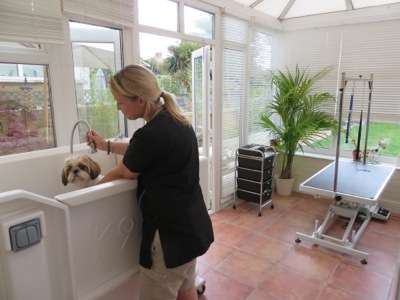 Home for A bath and a biscuit grooming salon